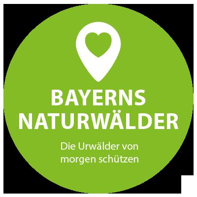 Naturwald Bayern